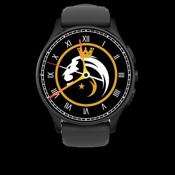 lionswatch.jpg