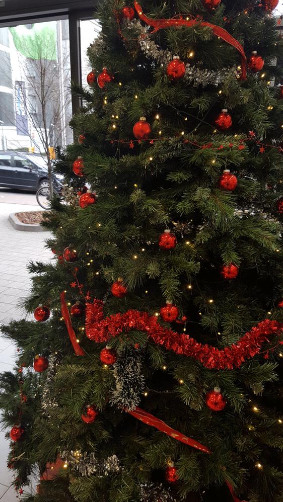 Weihnachtsbaum Natürlich.Foto Challenge Wer Findet Den Schönsten Weihnachtsbaum Samsung