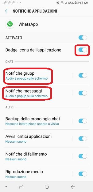 notifiche whatsapp1.jpg