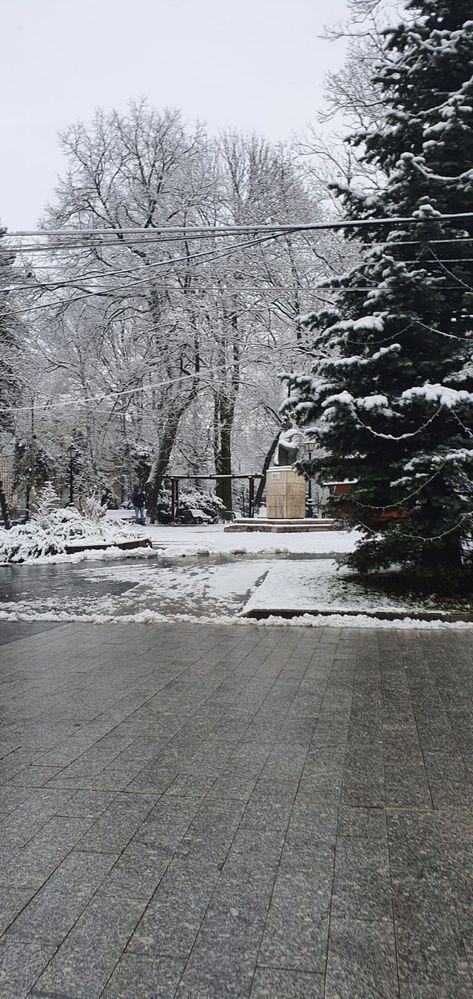 Hope for snow.jpg