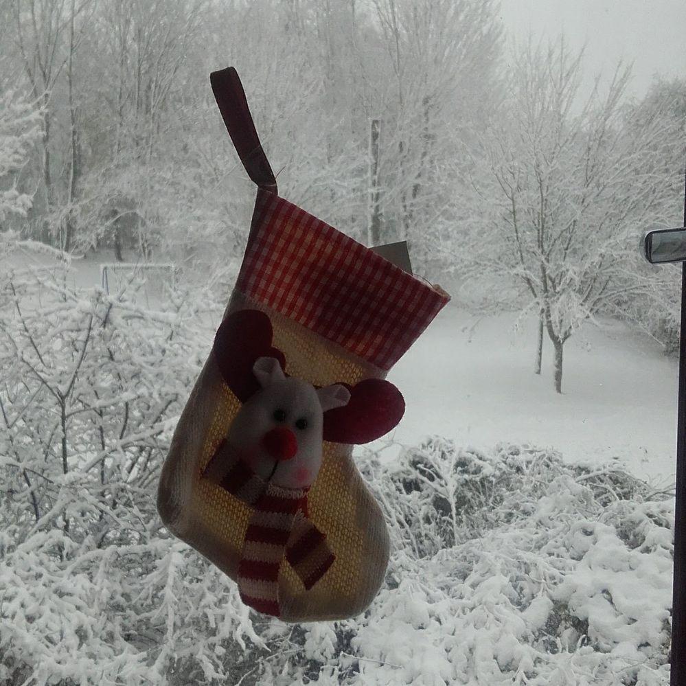 stockings and snow.jpg