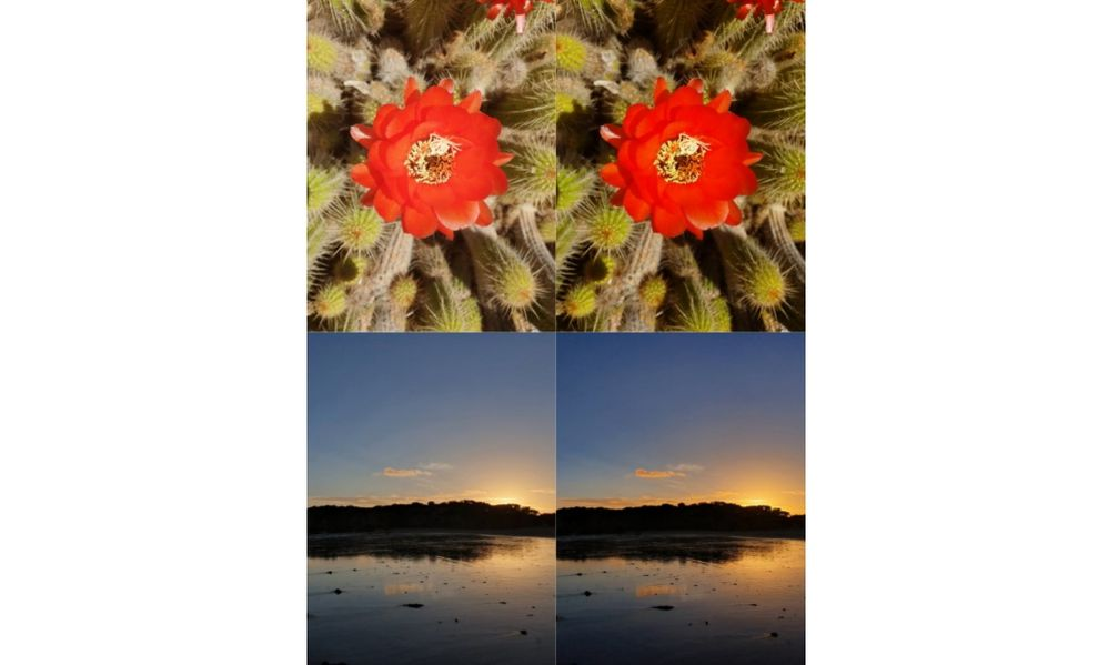 Pictures (right) taken with Scene Optimizer