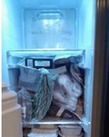 frigo plein.PNG