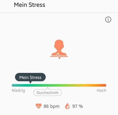 Stressmessung.jpg