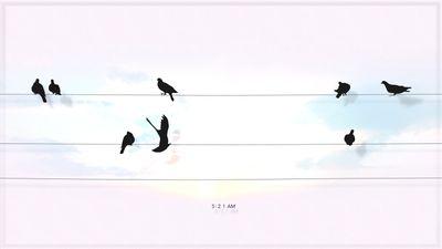 Bird-Clock (1).jpg